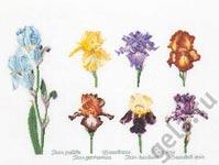 Набор для вышивки крестом Группа цветов ириса