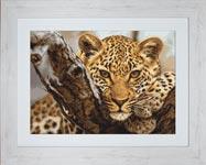 Набор для вышивки крестом Леопард - Leopard