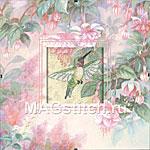 Набор для вышивки крестом Hummingbird Grace - Колибри