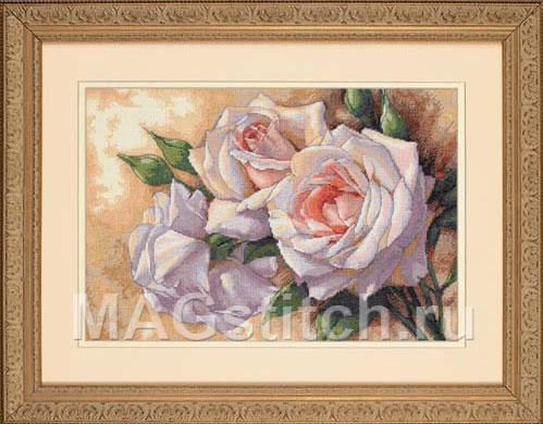 White Roses - Белые Розы
