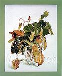 """Набор для вышивки крестом Дикий виноград - Fujico """"Wild Grapes"""""""