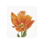 Набор для вышивки крестом Триумф-тюльпан оранжевый
