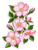Набор для вышивки крестом Дикая роза