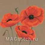 Набор для вышивки крестом Poppies - Маки