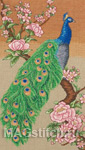 Majestic Peacock - Волшебный павлин