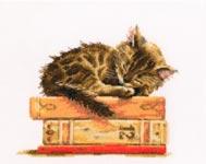 Сны Мурлыки - Cats dream