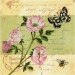 Набор для вышивки крестом Почтовая открытка - Шиповник - Postcard - Dog Rose