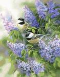 Раздел бесплатных схем вышивки крестом Птицы и бабочки