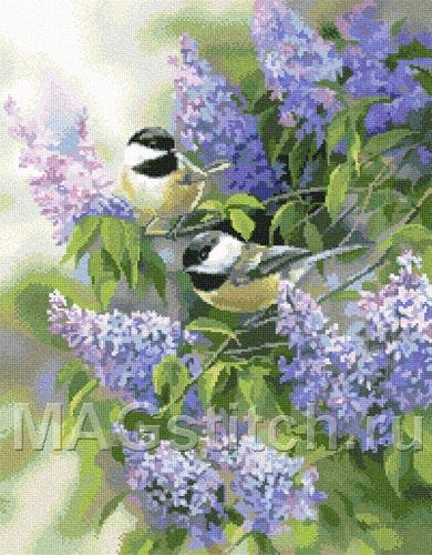 Вышивка крестом бесплатные схемы Животные птицы, вышивка крестом бесплатные схемы скачать.