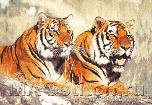 Схема вышивки крестом тигр фото 402