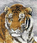 Бесплатная схема  для вышивки крестом Тигр. фрагмент