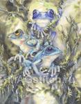 """Схема для вышивки """"Дикие лягушки"""" - Frog Wild by Bergsma"""