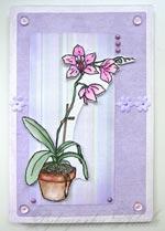 """Открытка ручной работы """"Орхидея"""""""