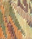 Вышивка гладью Тигра. Крупный фрагмент