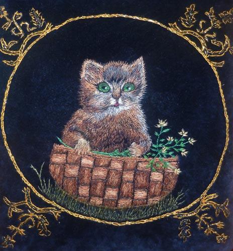 Кот Василий с удивлением